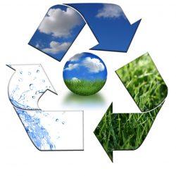 Environment - 1